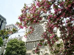 Езикови курсове в Париж